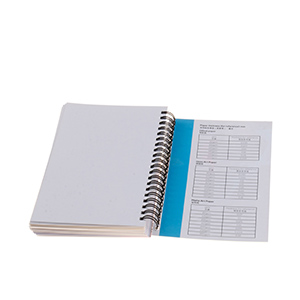Paper Sample Manual