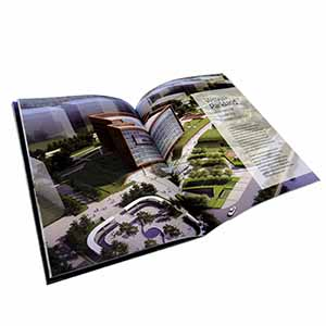 Full Color Brochure Printing Services