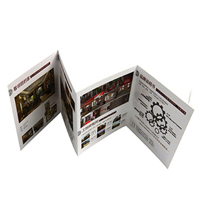 print accordian color leaflet