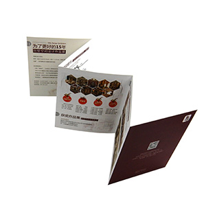 accordian color brochure printing