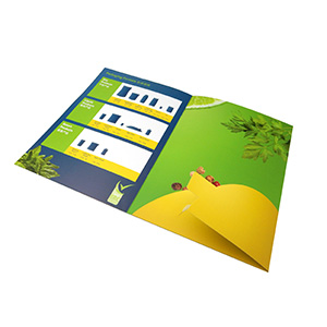 Die-Cutting Folder Printing